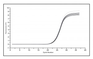 Test Results Graph PCR
